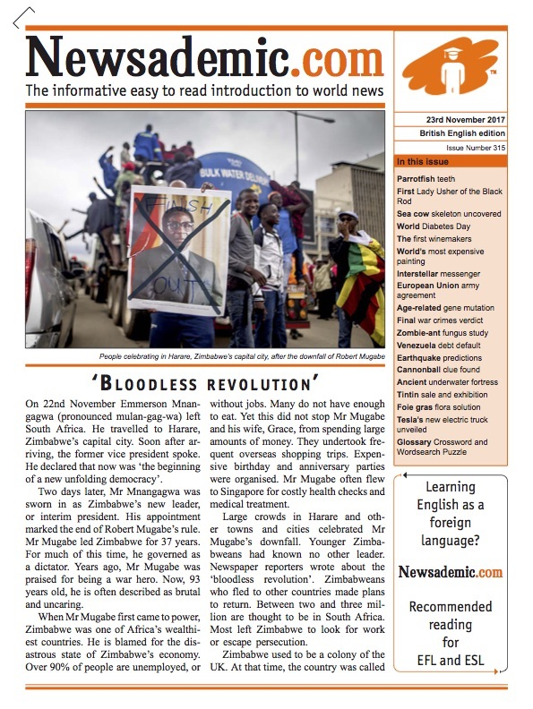 Newsademic Issue 315 Front Cover: Bloodless Revolution Zimbabwe - the end of Robert Mugabe's rule